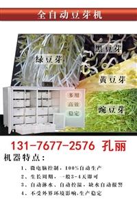 河北豆芽機是全自動的嗎 生產豆芽的設備多少錢 豆芽機的報價