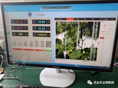 农业物联网技术在温室大棚中的应用