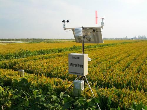 BYQL-YZ型数字高精度自动气象站