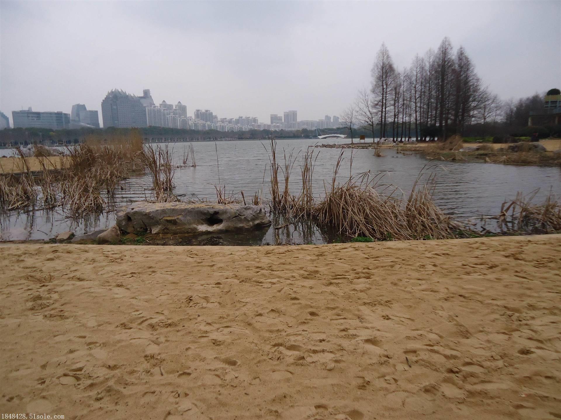 北京哪里有天然海沙厂家
