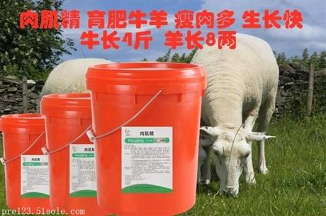 很多养殖朋友经常会问,为什么我的羊每天吃很多草也长不快