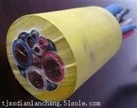 YC轻型橡套电缆