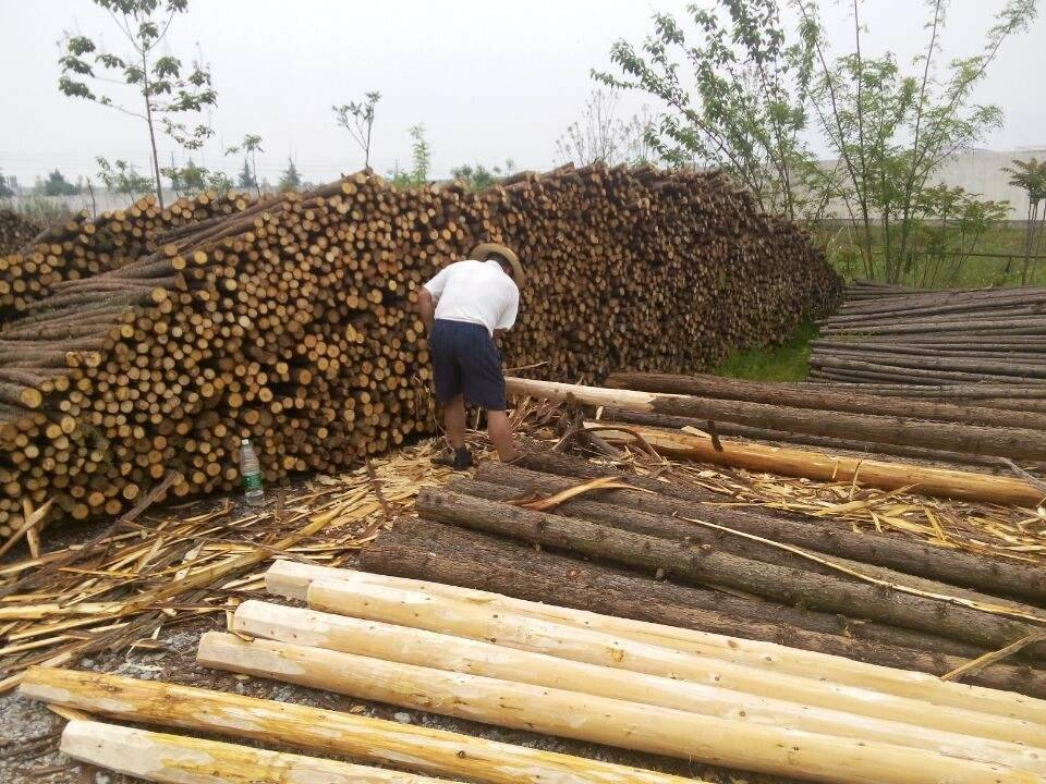 进出口木材清关麻烦吗需要准备什么资料
