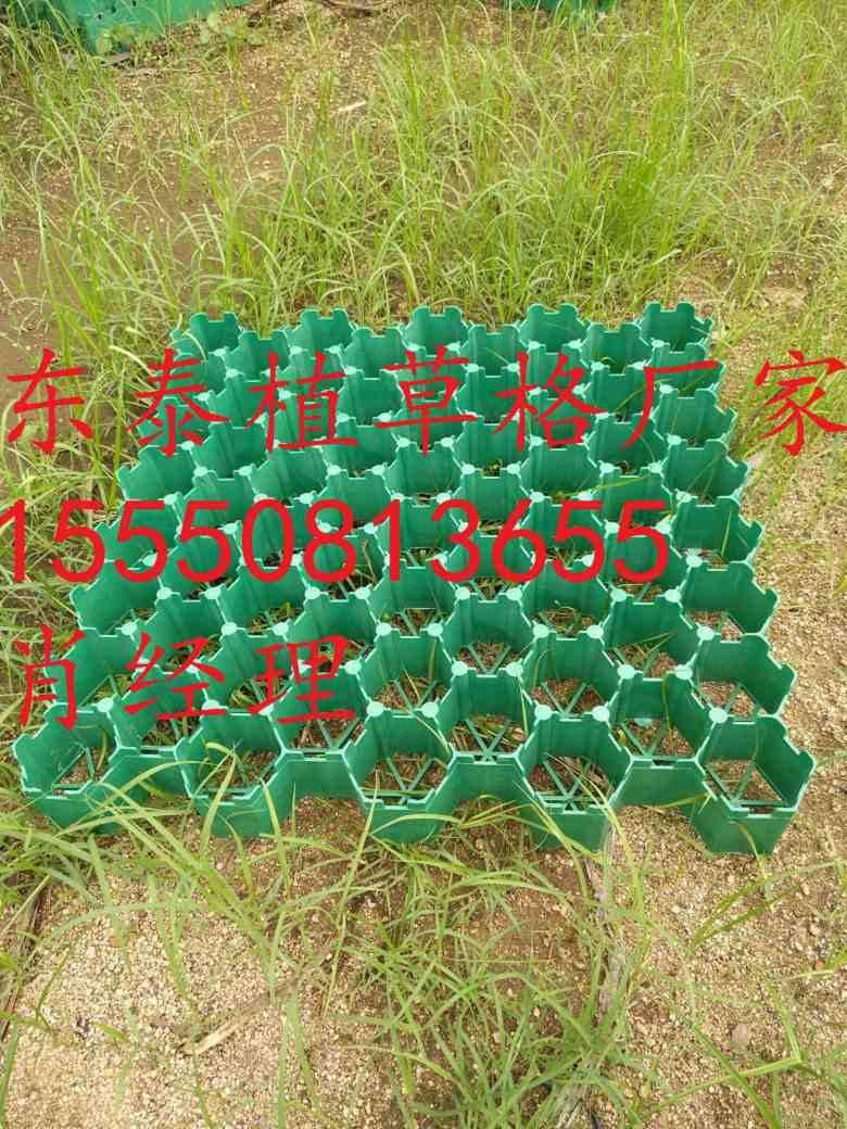 大连绿化植草格7公分护坡植草格
