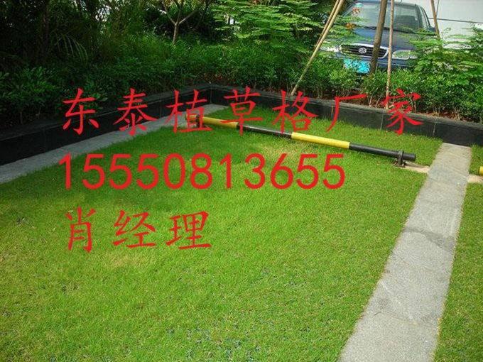 资阳人行道植草格6.8公分植草格