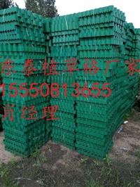 宜昌5公分护坡植草格厂家品牌/在线联系/今日推荐