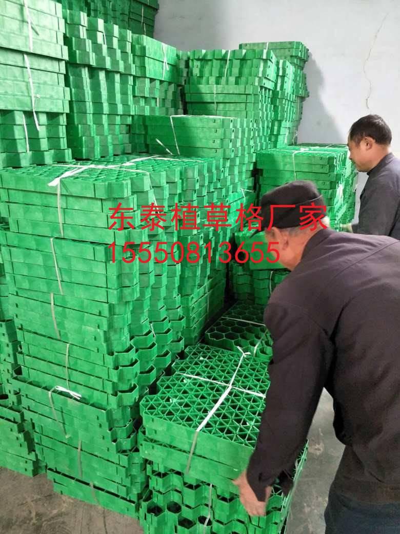 湘潭7公分绿化植草格4公分花口植草格