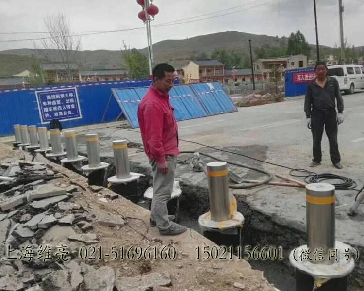防冲撞升降路桩,不锈钢升降路桩,上海维亮路桩VEL-LZ21906