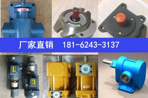 油泵齿轮油泵CBL5200-A1R南充
