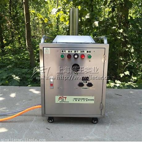 闯王CWR09B流动上门洗车机 蒸汽清洗机洗一次多少钱 市场前景好吗