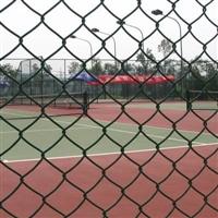 国帆浸塑体育场围网 体育场勾花护栏网