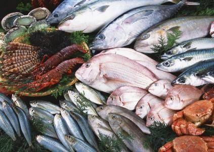 上海食品报关公司 空运进口冰鲜三文鱼当天结关