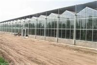 湖南纹络钢构智能生态餐厅温室饭店6米立柱、6000平方建筑厂家