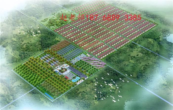 深圳创森林城市画册
