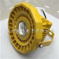 NFE003 L 60W防爆LED灯