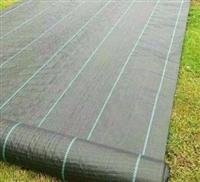 好質量防草布,好質量價格低.歡迎訂購