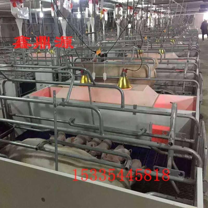 猪用养殖设备 玻璃钢仔猪保温箱 小猪动物取暖箱