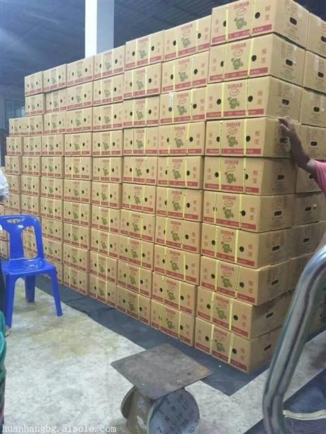 马来西亚榴莲进口报关具体流程水果报关行