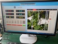 温室大棚环境智能监控系统