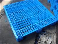 石家庄塑料托盘