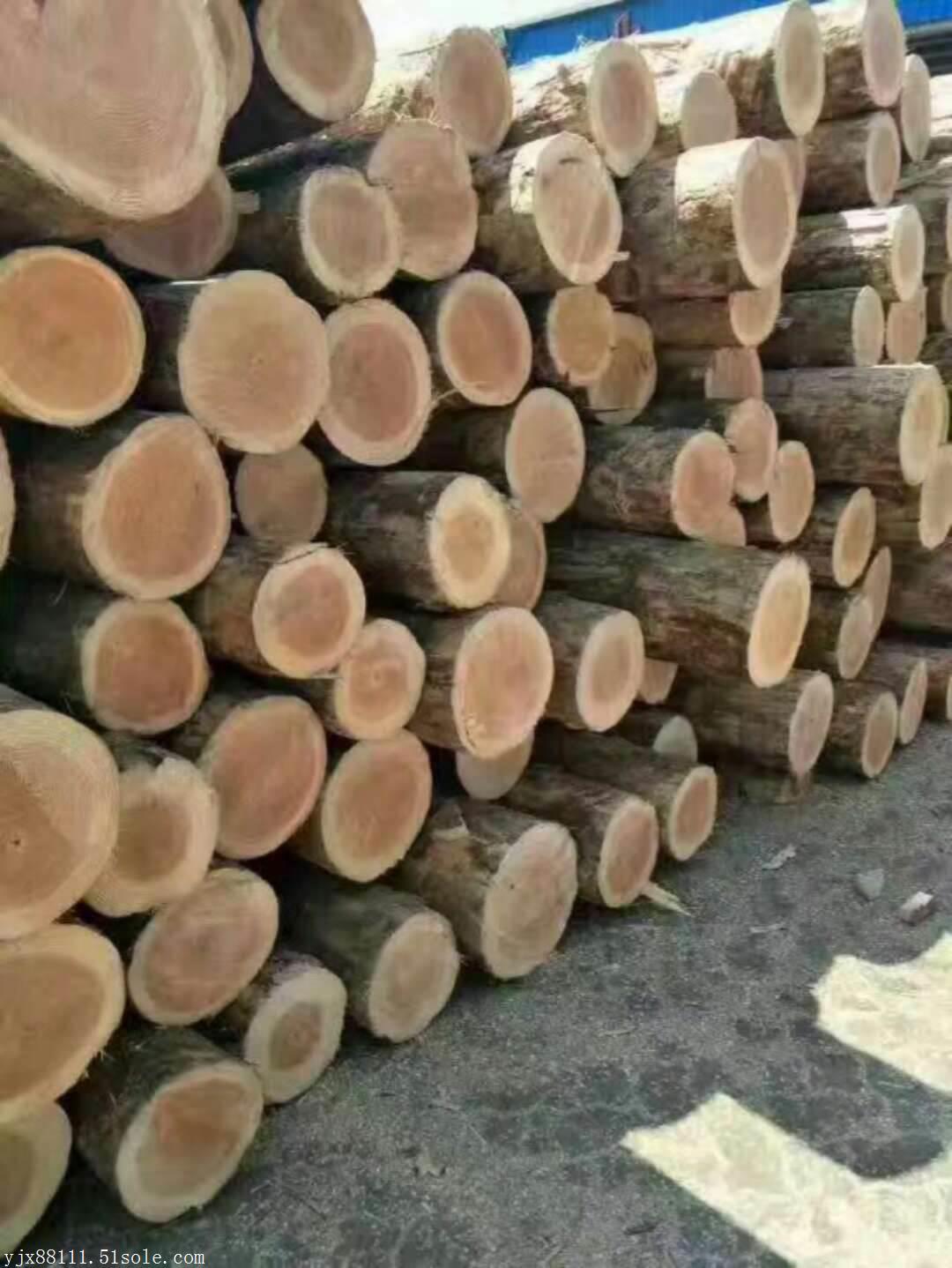 广东建筑木方厂家建筑模板厂家进口木方厂家工地木方厂家