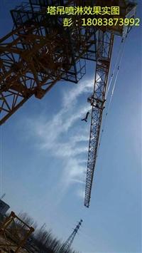 舟山工地塔吊喷淋安装LYS喷头示意图