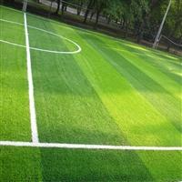 路北唐山市区足球场人造草坪观光草坪专业施工划线