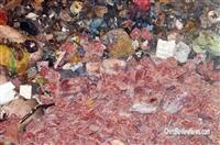青浦区仓储过期食品销毁,金山区变质食品饮料销毁