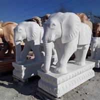 漢白玉石雕大象 單位門口招財石雕大象雕刻