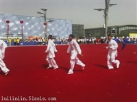 直销厂家大量供应好质量地毯,应用广泛.规格齐全