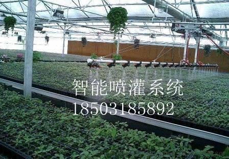 安平智能喷灌系统-水车-温室灌溉-温室种植-省时省力超值低价-华
