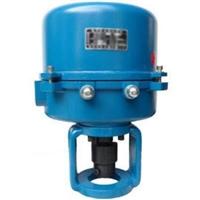 361RSC-30 361RXC-30 電動執行器 電動閥門