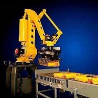 奥地利艾杰莫机器人到国内需要什么治疗