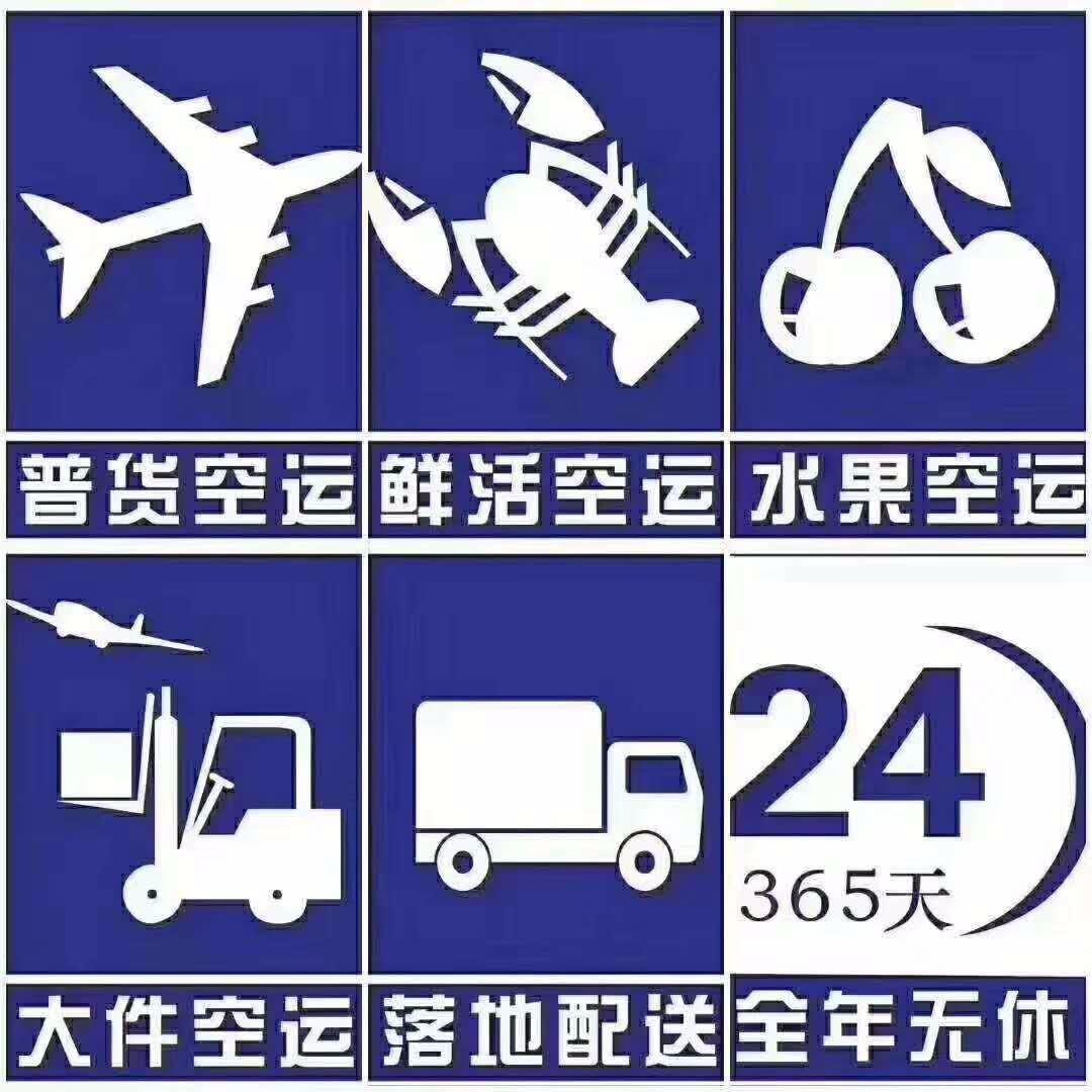 嘉兴发什么快递到广州可以当天到DQWL快件嘉兴到广州航空托运.