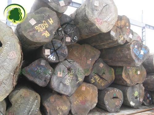 黄埔港南美材报关公司|铁苏木进口清关手续及费用