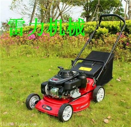 汽油草坪机优质草坪机生产厂家