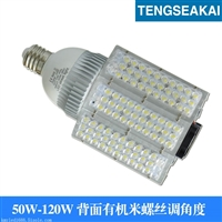 E40路灯泡 LED路灯 小区道路照明60W路灯 普瑞芯片高光效灯珠