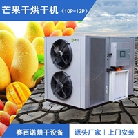 新一代芒果烘干机