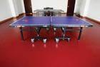 乒乓球塑胶地板 乒乓球场地地胶 乒乓球地板胶价格 运动场地地胶