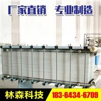 陕西水处理林森LS-DSX 电渗析 器  电渗析装置  电渗析设备