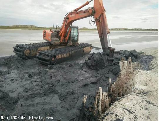 水陆两用挖掘机出租是怎么收费用