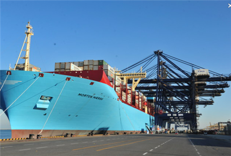 海口到上海海运集装箱运输内贸