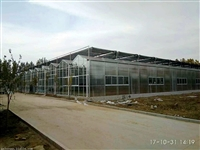 上海高抗雪阳光板大棚温室8mm边墙、内部独立基础型建造公司
