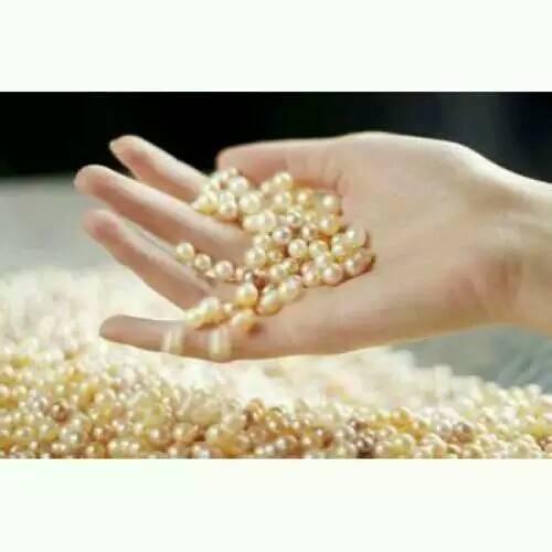 翠福名玉珍珠材料加工