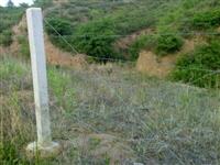 内蒙古包头刺绳围栏刺铁丝围栏刺丝滚笼
