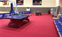 唐山乒乓球室内专用运动地板/pvc地胶布纹图片