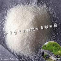 薄荷提取物专业厂家 野生薄荷粉批发 薄荷浸膏 薄荷超浓蓉粉