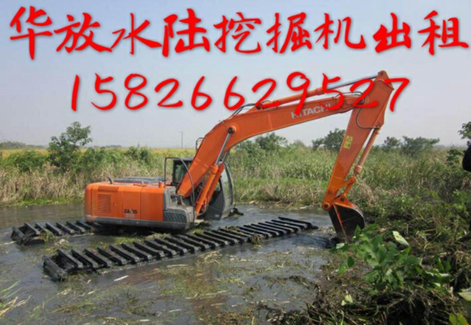 茂名水陆两用挖掘机出租 哪家强 水上挖掘机出租好不好 水挖出租