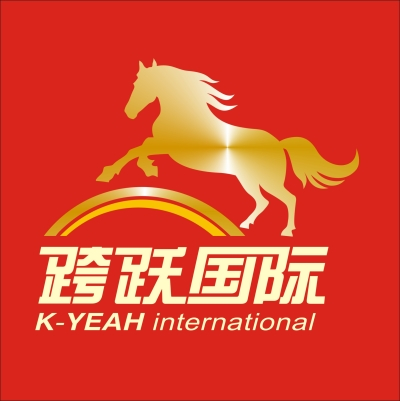 广州跨跃国际货运代理有限公司