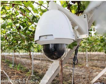 星奥温室大棚远程控制系统,自动化环境监测,专业技术团队